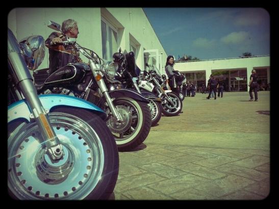 Harley Davidson - Caio Neumann